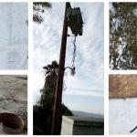 Roban cableado eléctrico a la Cespe y dejan sin agua a miles