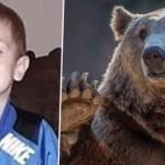 Oso rescató a niño de tres años perdido en un bosque