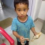Atropella niño a pollo y con sus ahorros intenta salvarlo