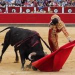 Gran corrida de toros y verbena gastronómica
