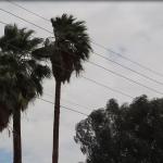 Alerta por tormenta de polvo en Mexicali este martes