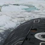 Oso polar se sube a submarino nuclear ruso en busca de comida