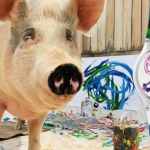 Conoce a Pigcasso, la cerdita artista que pinta y hace diseños con su nariz