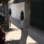 Nuevos parquímetros de Tijuana ya tienen ubicación
