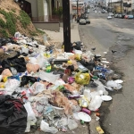 Multas desde 400 a 80 mil pesos por tirar basura en vía pública