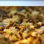 Productos naturales derivados de abejas