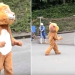 Zoológico crea simulación de escape con león botarga  y se vuelve viral