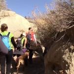 Recomiendan a cachanillas evitar la práctica de senderismo en temporada de verano