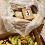 Descubren paquetes de cocaína entre cajas de plátanos en EE.UU