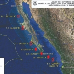 Lanzan app para conocer la actividad sísmica en BC