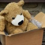 Abandonan a niño de 3 años en caja de cartón, los padres han desaparecido