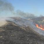 Bomberos de Tijuana han atendido 180 incendios durante las últimas horas