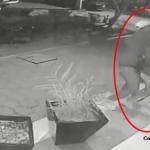 Estrangula a mujer para robarle el celular