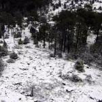 Se registran las primeras nevadas en Durango