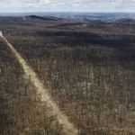 ¡Cae lluvia en Australia! ¿Podrá aplacar los incendios?